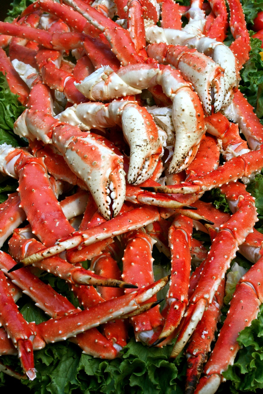 Giant Alaskan King Crab Legs by the pound  Giant Alaskan King Crab Legs